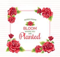 红色玫瑰花框架设计矢量素材