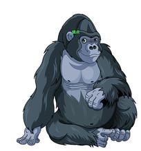 矢量大猩猩