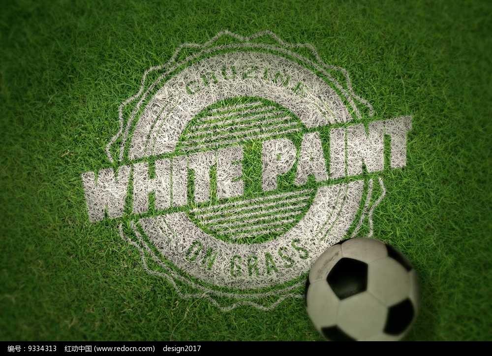 绿色草坪上的白色圆形花边线条字母造型logo和足球