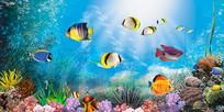 海底世界素材