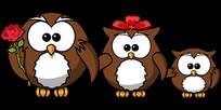 猫头鹰家庭