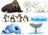 极地动物卡通素材