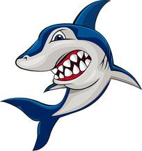 矢量鲨鱼素材