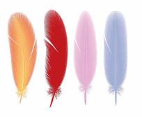 羽毛矢量素材