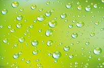 晶莹的绿色水滴