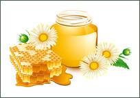 收集的蜜蜂矢量素材