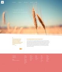 外国暖色调商务网站模板