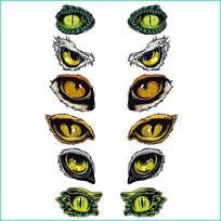矢量动物眼睛图案