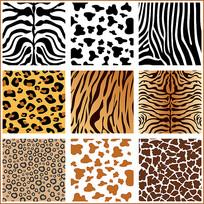 动物毛皮素材
