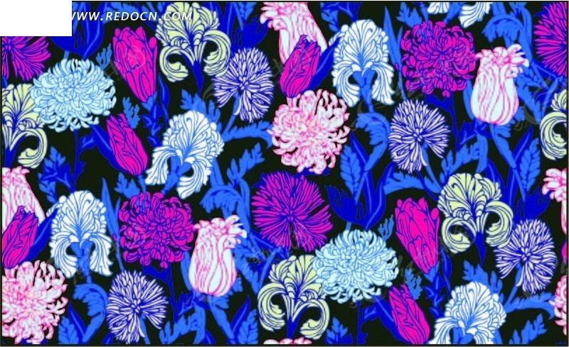 菊花叶子皱图片