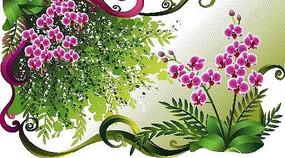 涂鸦卷草花纹背景上的蝴蝶兰