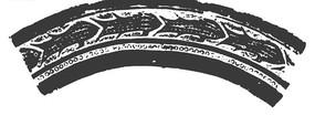 弧形鱼图案古代花纹矢量图