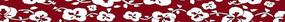 手绘朱红色背景上的蝴蝶兰