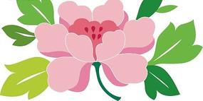 粉色花朵和绿色叶子