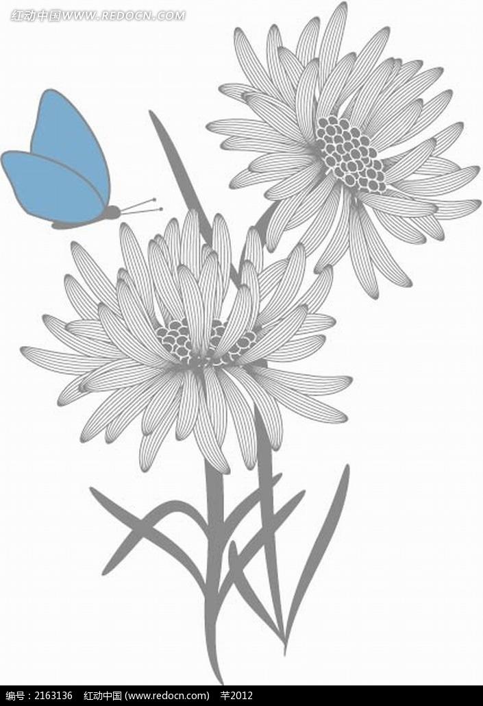 菊花和蓝色蝴蝶黑白线描画EPS素材免费下载 红动网