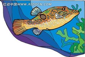 卡通鱼造型