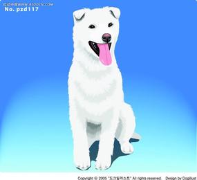 蹲着伸舌头的白毛狗