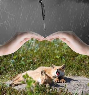 保護野生動物海報