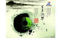 中国风润华集团画册PSD素材