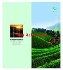 旅游公司折页封面
