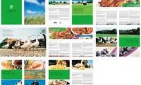 农业画册版式设计模板075