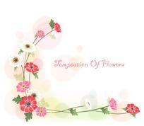 红白花角花