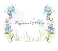 蓝色及紫色花朵