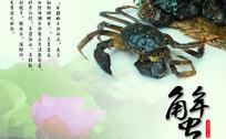 洪泽湖大闸蟹展板广告