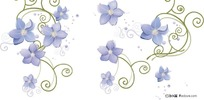 插画-花朵纹样