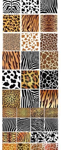 动物纹理皮肤背景矢量素材