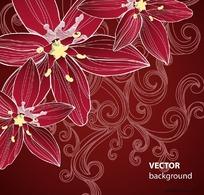 红色漂亮花朵