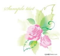 精美粉色玫瑰花贺卡矢量素材