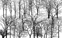 多款枯树剪影psd素材