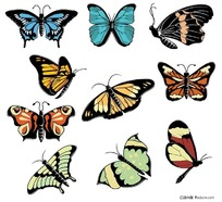 彩色蝴蝶矢量素材