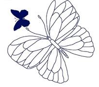 线描蝴蝶与深蓝色蝴蝶