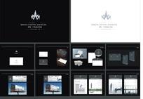 中央大夏VI设计模板