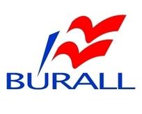 BURALL标志设计