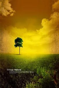 金色天空和草地上的小树