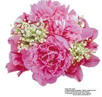 美艳的红色牡丹和满天星艺术花束抠图素材