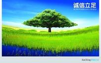 绿色草地上的大树PSD素材