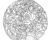 单色传统图案花朵与果实AI矢量文件