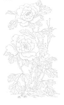牡丹花枝/花苞/花蕾构成的吉祥画