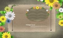 清新可爱的菊花背景模版