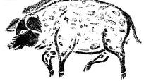 手绘走路的猪黑白矢量图