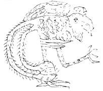 简单几何线条动物画-抬起脚的鸟