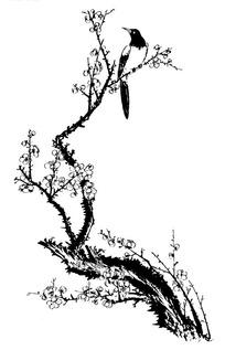 梅花树上的小鸟黑白图