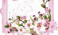 粉色花朵和绿叶装饰的粉色边框矢量图