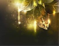 深色调背景上的树叶矢量素材