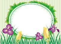 插画鸢尾花和郁金香装饰的椭圆边框