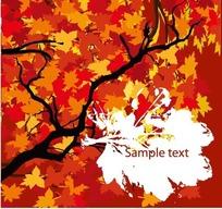 植物插画—美丽的树木和叶形文本框